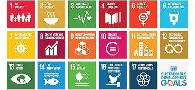 Sustainable development: issues and paths